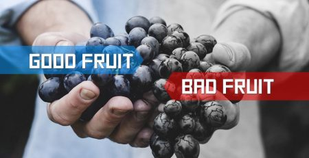 Discerning between good fruit and bad fruit of the Spirit.
